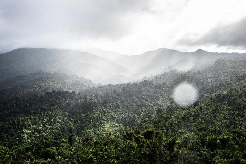 Puerto Rico - El Yunque Rainforest